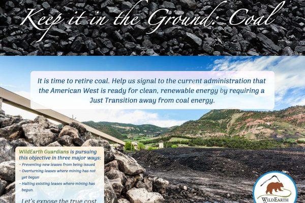 Howling Affair - Coal Poster web
