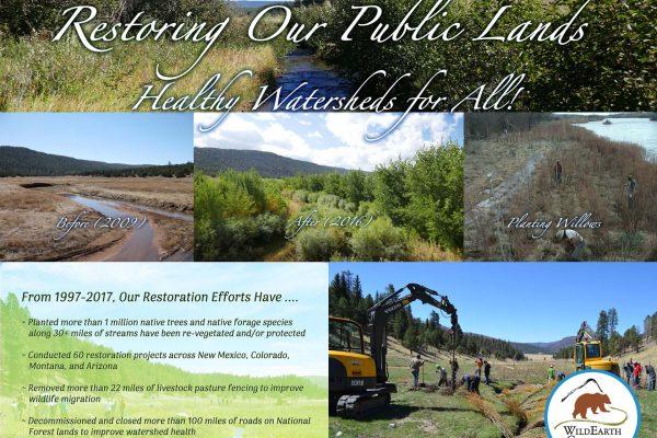 Howling Affair - Wild Lands Poster web